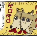 かにかまを食う犬