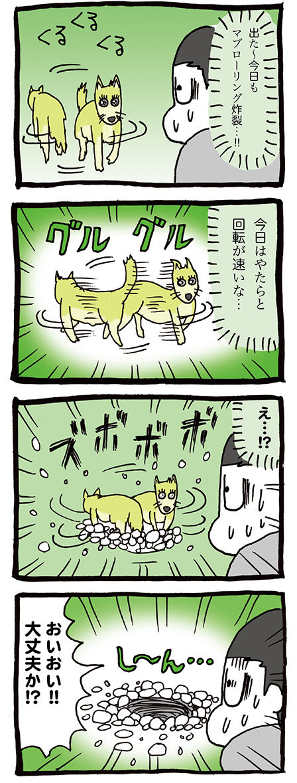 高速回転する犬