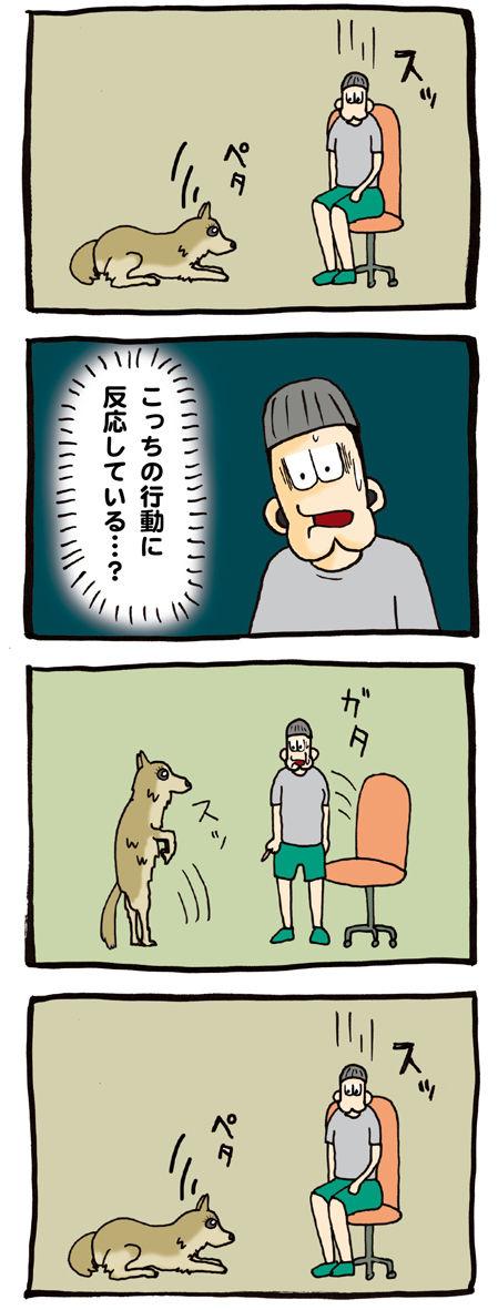 ご主人の食べ物を狙う犬