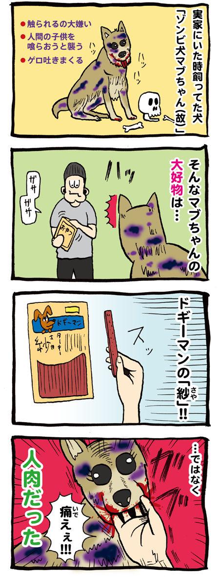 ゾンビ犬のマブちゃん