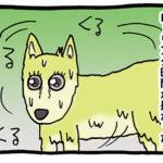 回転する犬