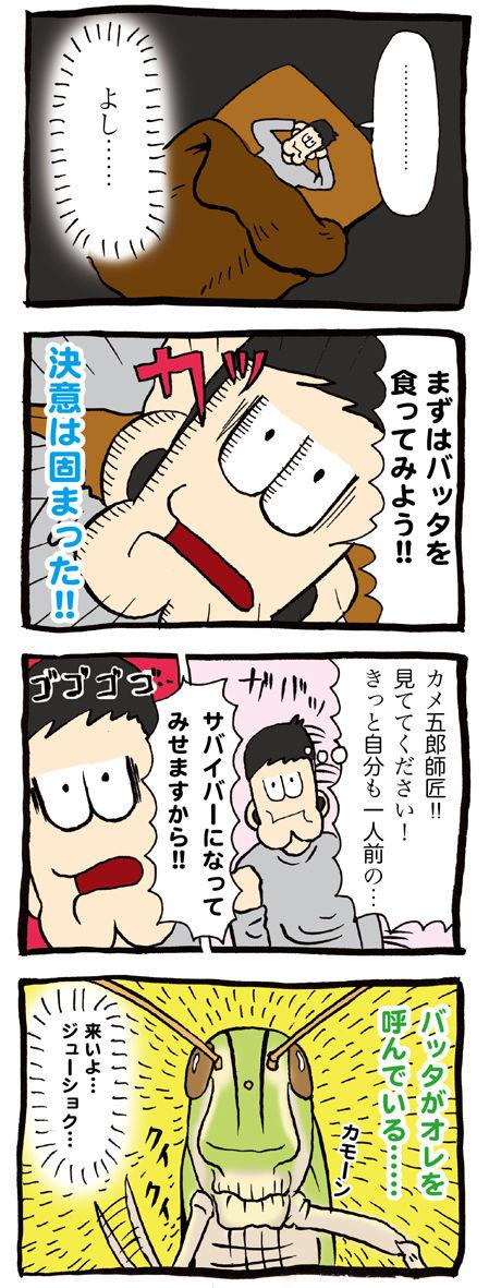 バッタを食うカメ五郎