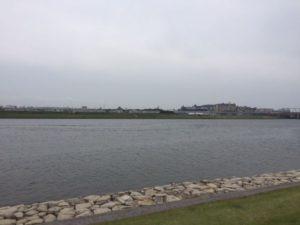 ディズニーランド付近の川