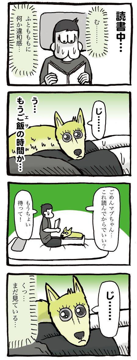 飼い主のふとももに顔を乗せる犬