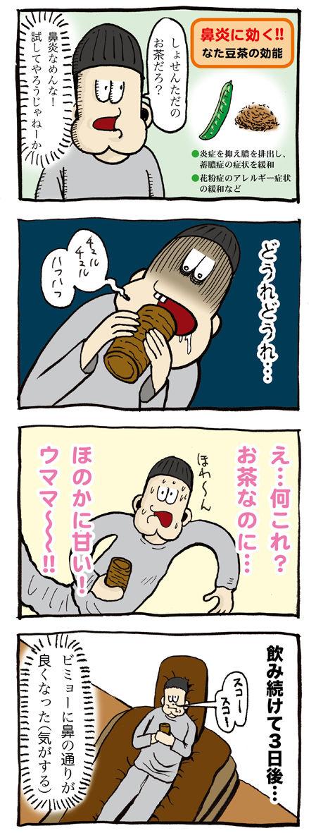 鼻炎になた豆茶が本当に効くのか飲んでみた
