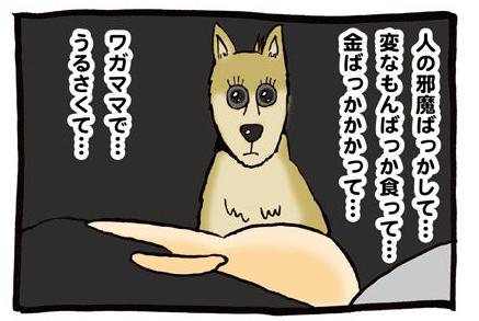 わがまま犬