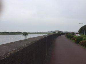 江戸川沿いのサイクリングコース