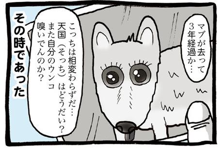マブちゃん